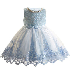 Girls  Princess tutu Dress -Bridemaid Dress Girls Clothing