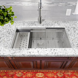 "Nantucket Sinks Pro Series 32"" Stainless Steel Kitchen Sink, ZR-PS-3220-16"