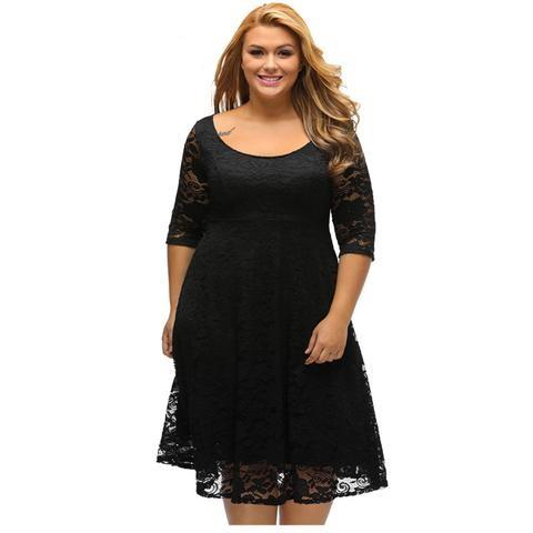 Drop-ship Plus Size Black Lace Sleeved Fit and Flare Curvy Dress - NaomisStore.com