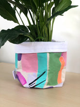 Pastel Rainbow Pot Cover + Drip Tray + Plant Of Choice