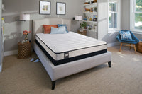 Sealy Fog Firm Queen Mattress and Boxspring Set