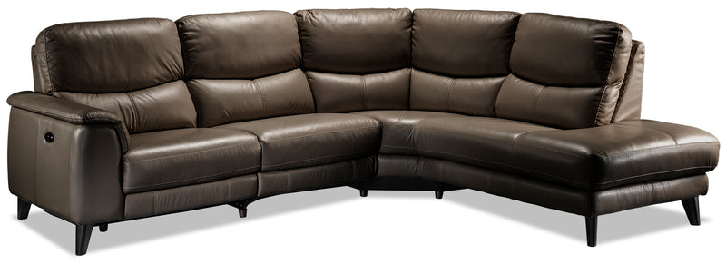 Delvanie 2-Piece Power Reclining Sectional with Right-Facing Chaise - African Grey