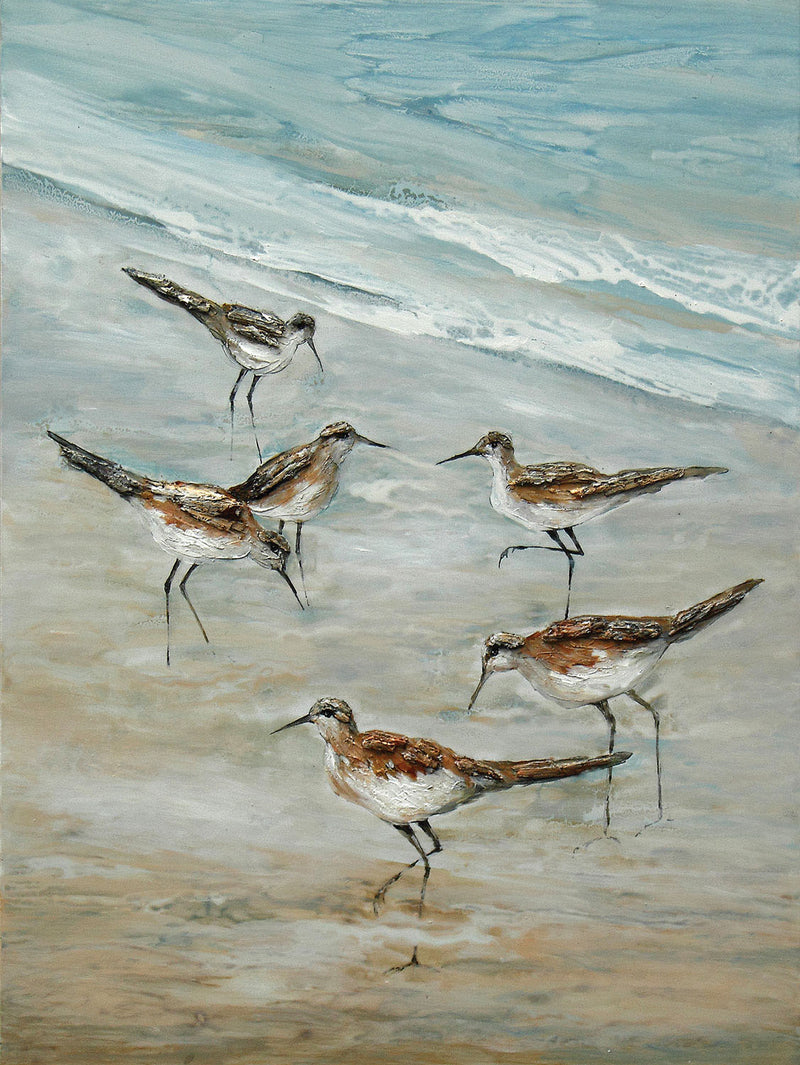 "Beach Birds Canvas Print (36"" X 48"")"
