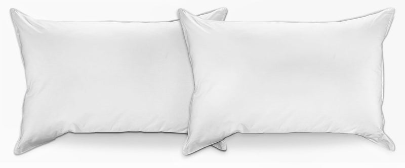 Sleeprite 2-Piece Pillow Set - White