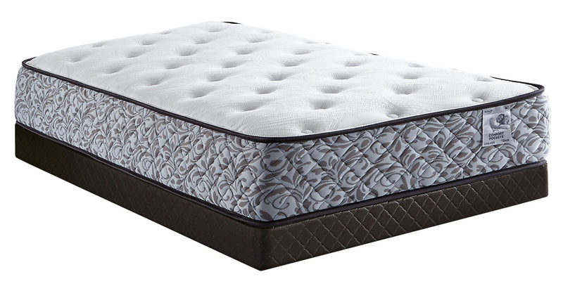 Springwall Dreams Twin Mattress-in-a-Box with Boxspring|Matelas dans une boîte à Euro-plateau et sommier Dreams Springwall pour lit simple