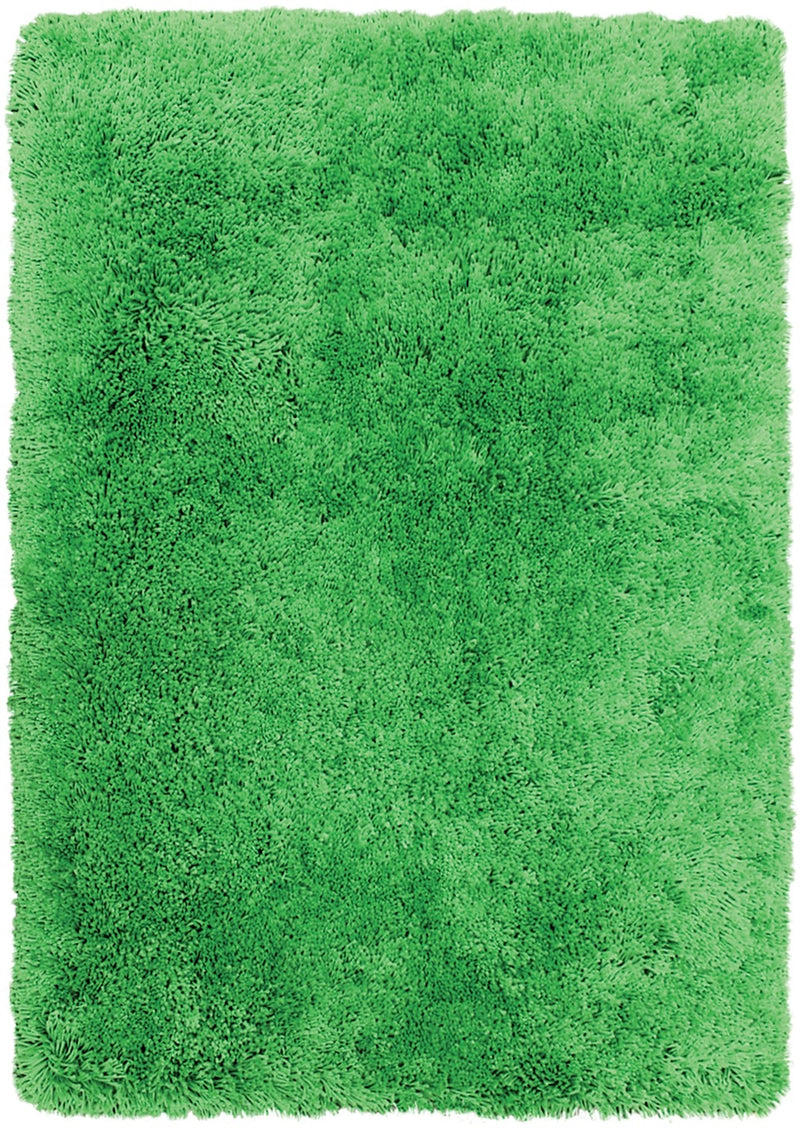 Green Fashion Shag Area Rug – 4' x 5'|Carpette à poil long tendance de 4 pi x 5 pi - verte