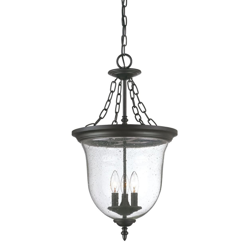 Youghal Outdoor Hanging Lantern - Matte Black
