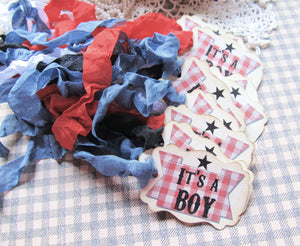 It's a Boy BBQ Baby Shower Favor Tags with ribbons - Ready to Ship - Set of 12- Baby Q Barbecue gender reveal