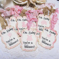 It's a Girl Pink Plaid Baby Shower Decorations Package Bundle Set