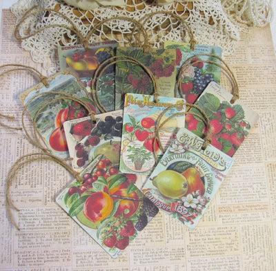 9 Vintage Seed Packet Catalog Image Gift Hang Tags with twine - Vintage Fruit Tags - Printed - Fruit #1