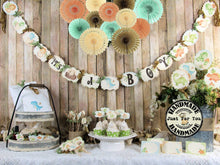 Baby Dinosaur Shower Decorations Package