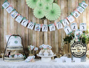 Succulent Cactus Baby Shower Decorations