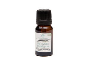 eucalyptus (blue mallee) essential oil | organic | natural | Nezza Naturals