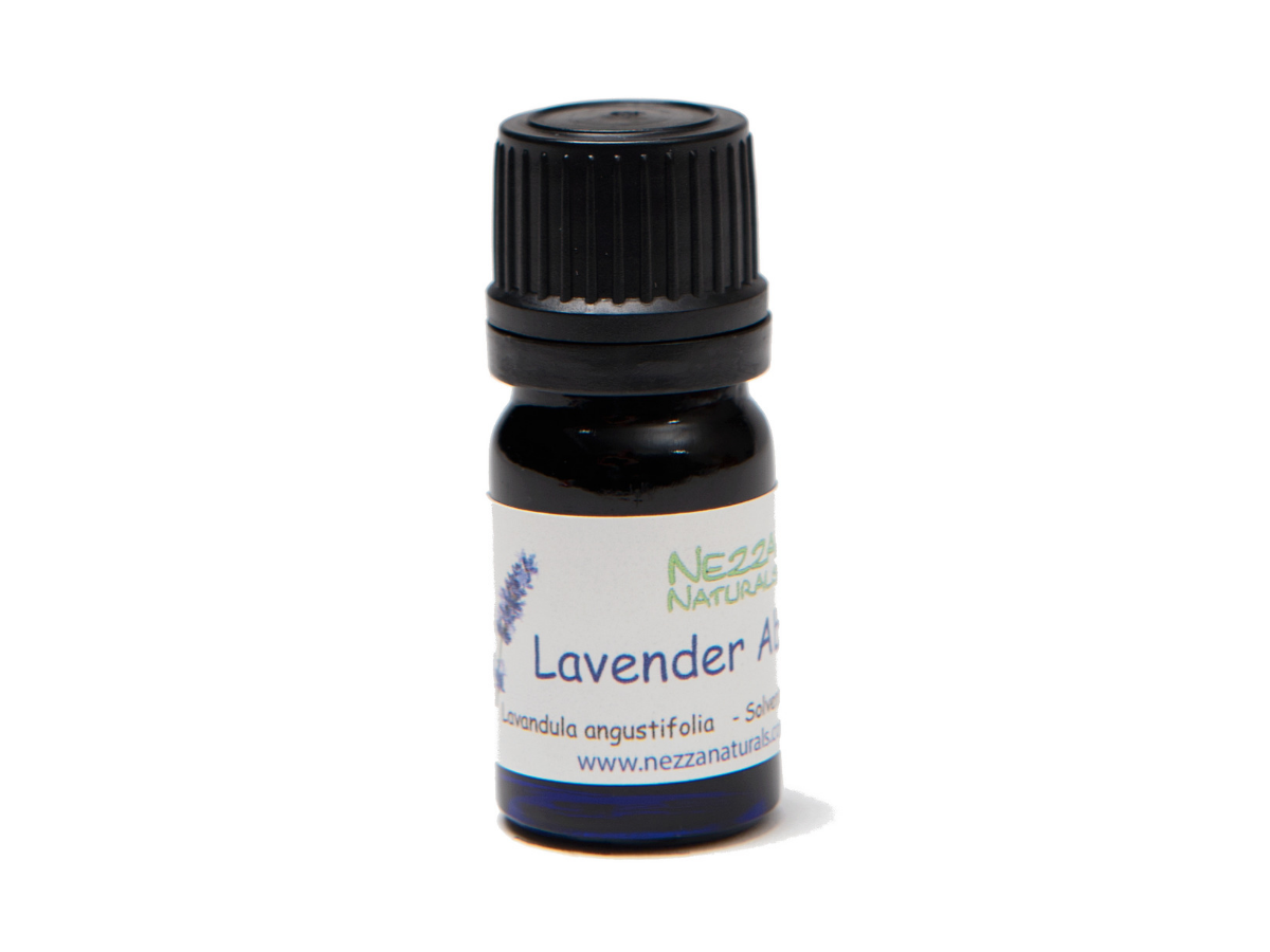 lavender absolute premium essential oil | organic | natural | Nezza Naturals