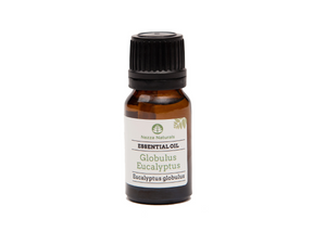 eucalyptus (globulus) essential oil | organic | natural | Nezza Naturals