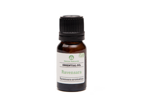 ravensara essential oil | organic | natural | Nezza Naturals
