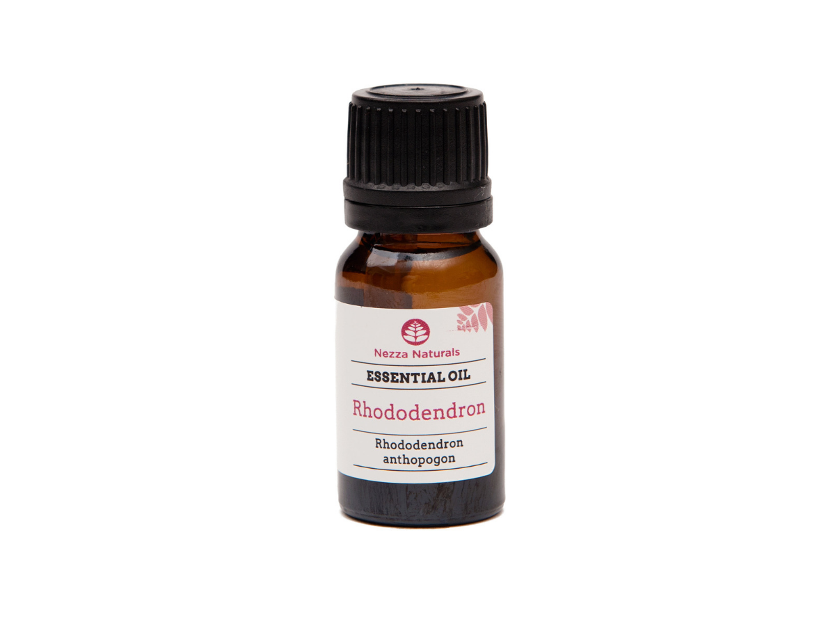rhododendron essential oil | organic | natural | Nezza Naturals