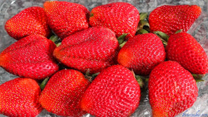 300 Rare Giant Strawberry Fruit Plant Seeds Organic Non-GMO Edible Home Garden