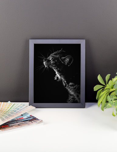 Kitty Yawn Framed Poster