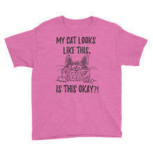 My Cat Looks Like This Is This Okay Youth Short Sleeve T-Shirt