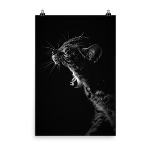 Kitty Yawn Poster