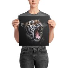 Daddy Kitty Yawn Photo Paper Poster