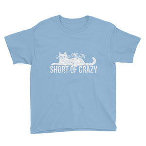 One Cat Short of Crazy Youth Short Sleeve T-Shirt
