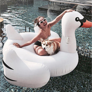 White Giant Inflatable Swan Pool Float