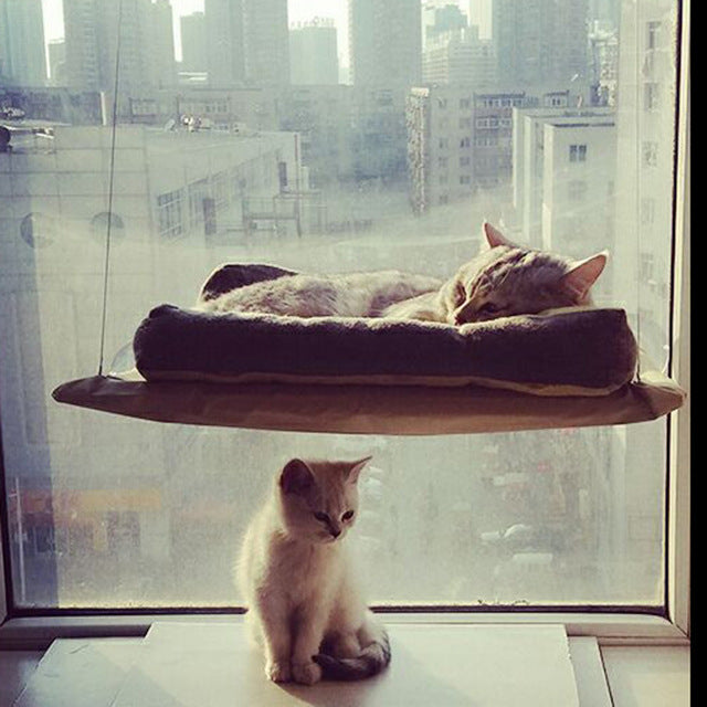 Classy Cat Window Hammock Classy Cat Window Hammock hammock The Purr House The Purr House- The Purr House