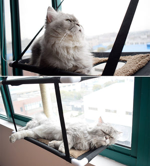 The Duplex - Classy Cat Window Hammock The Duplex - Classy Cat Window Hammock Home eLife Co.,Ltd The Purr House- The Purr House