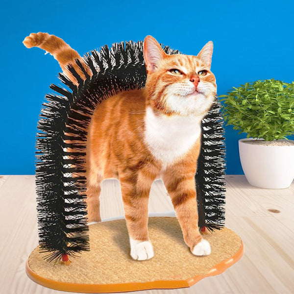 The Purrfect Arch - Self Grooming and Massaging Cat Toy – The Purr House