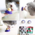 Cat Stick-On Candy - Healthy Treat For Cats Cat Stick-On Candy - Healthy Treat For Cats  eLife Co.,Ltd The Purr House- The Purr House