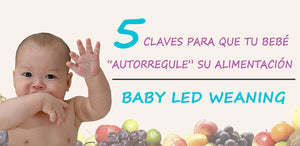5 claves baby led weaning