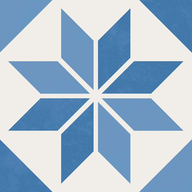 Picasso Blue Star