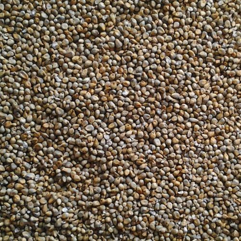 Red Mixed Manna 5kg