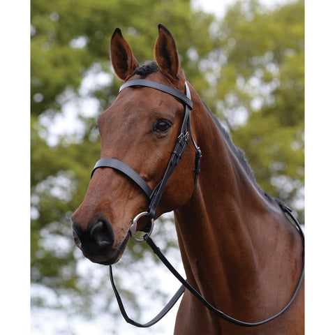 Black Flat Cavesson Bridle
