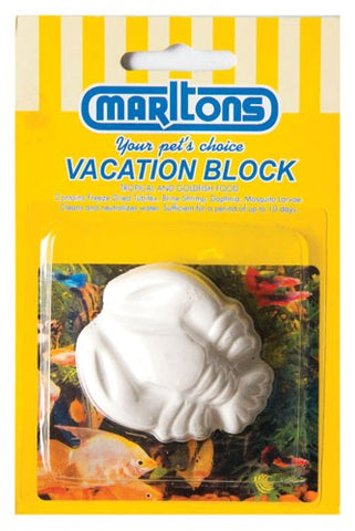 Fish Vacation Block