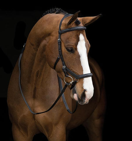 Competition Full Brown Deluxe Rambo Micklem Bridle