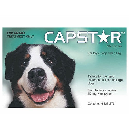 Capstar Large Dog 6 Tabs