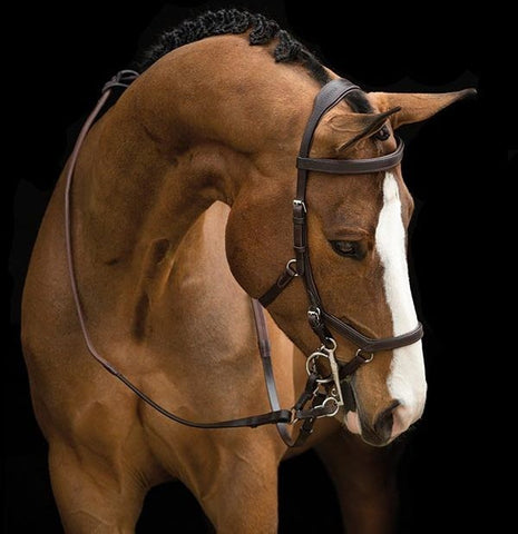 Competition Brown Rambo Micklem Bridle