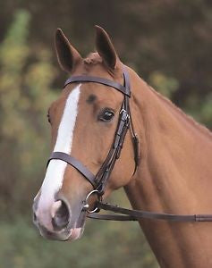 Brown Flat Cavesson Bridle