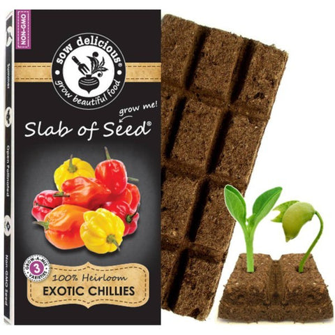 Exotic Chillies Sow Delicious slab of seed