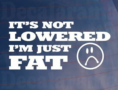 Its not lowered I'm just fat car decal