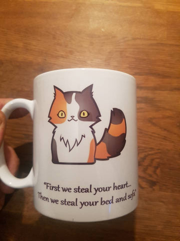 First we steal your heart cat mug