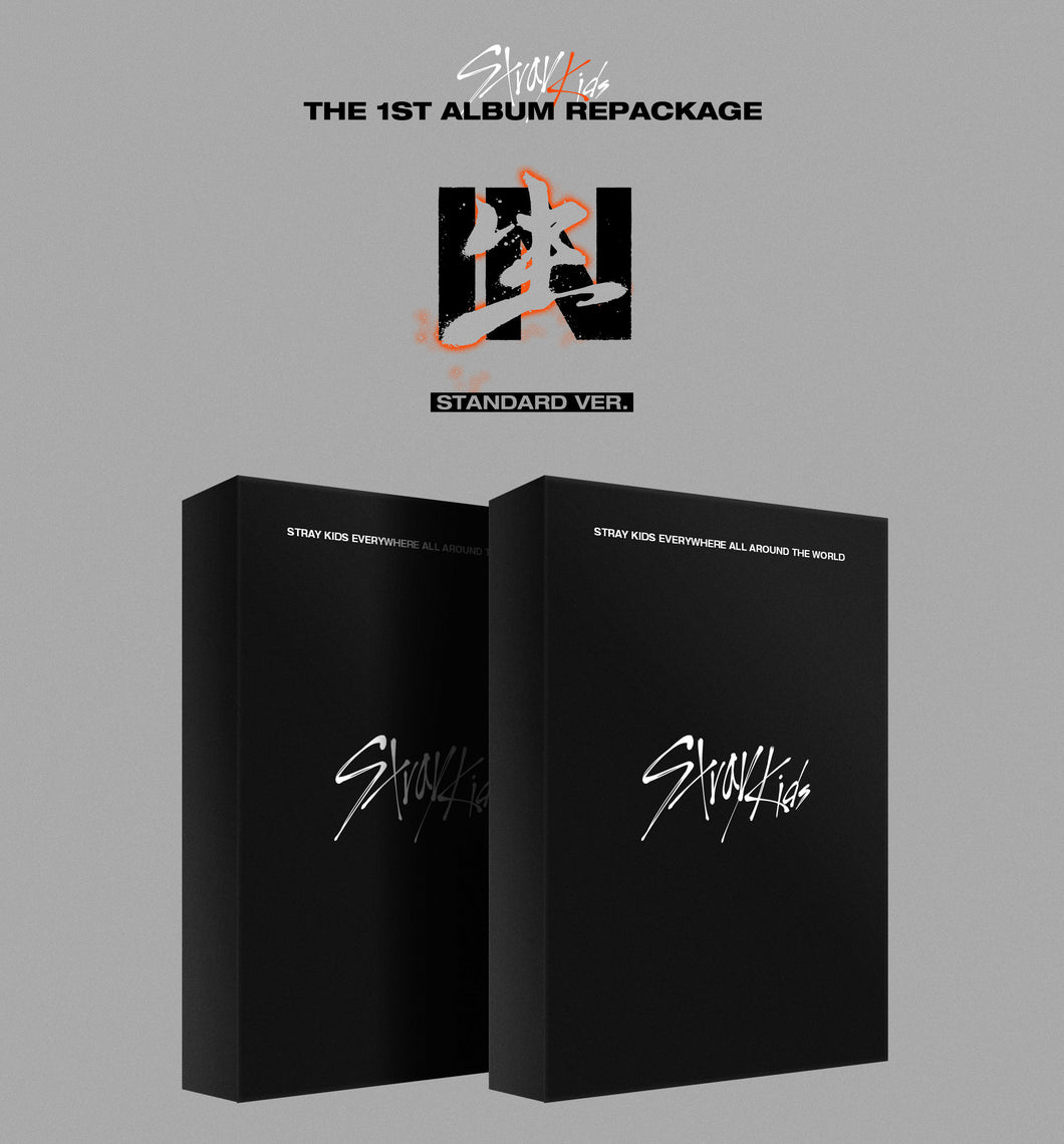 STRAY KIDS REPACKAGE ALBUM VOLUME 1 [IN LIFE] STANDARD VERSION