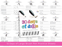 Brush Calligraphy: 30 Days of Drills