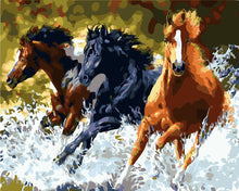 """3 Horses running through water"" Grown up paint by numbers"