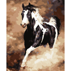 """Running Horse"" Grown Up Paint By Numbers"