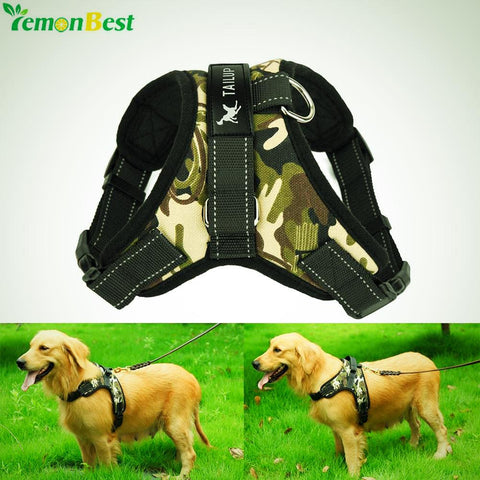 Large Dog Harness
