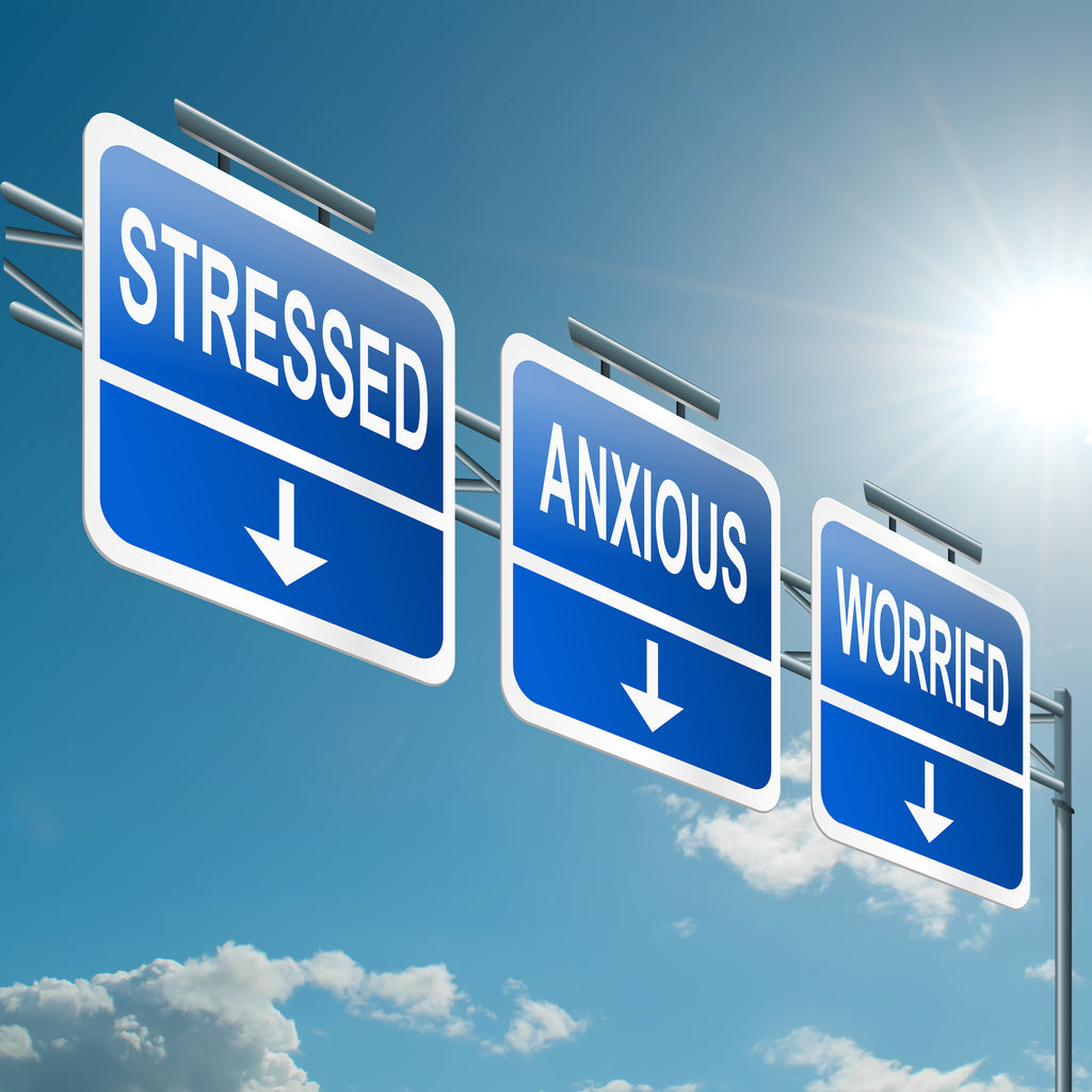 Stress and Anxiety—What's the Difference and Why You Should Care